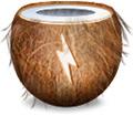 Ícone do coconutBattery