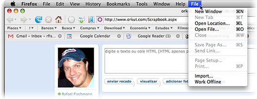 Bug File Firefox 3.0