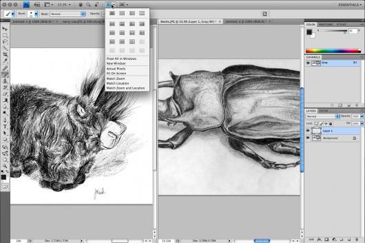 Adobe Photoshop CS4 Beta