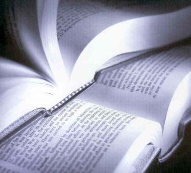 Livros para leitura