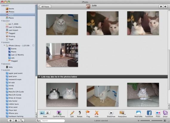 Gatos reconhecidos pelo iPhoto '09