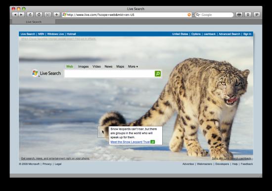 Snow Leopard no Live.com