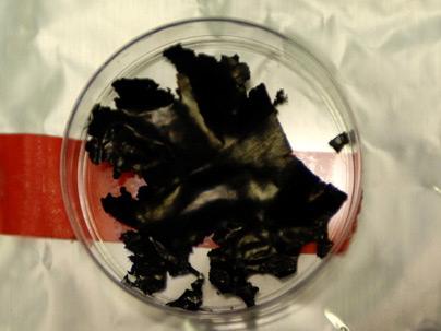Bateria revolucionária de íons de lítio