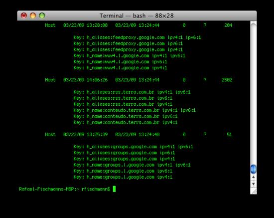 DNS no Terminal