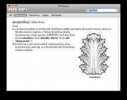 Dictionary - entrada ilustrada