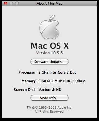 Se esse recurso estivesse presente no Leopard, eu poderia reinstalar e não teria que baixar uma montanha de updates para chegar ao Mac OS X 10.5.8
