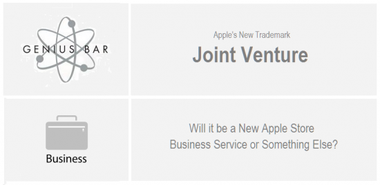 Apple - Joint Venture