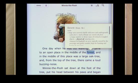 O iPhone OS possui um dicionário interno que está indisponível para desenvolvedores, mesmo estando presente no iBooks.