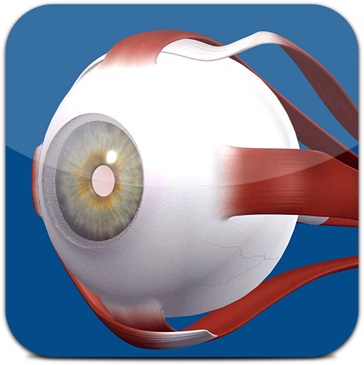 Ícone do Eye Model