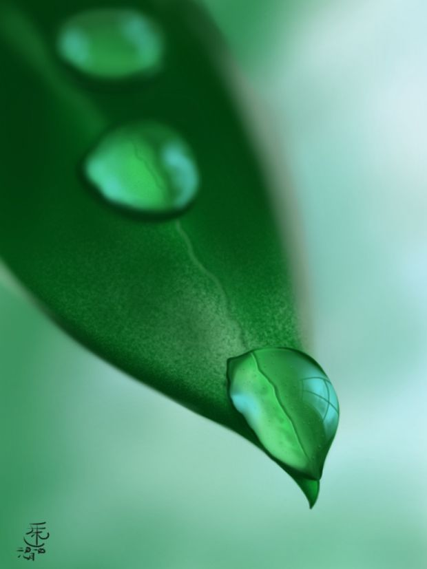Leaf o droplets, por KitKeat