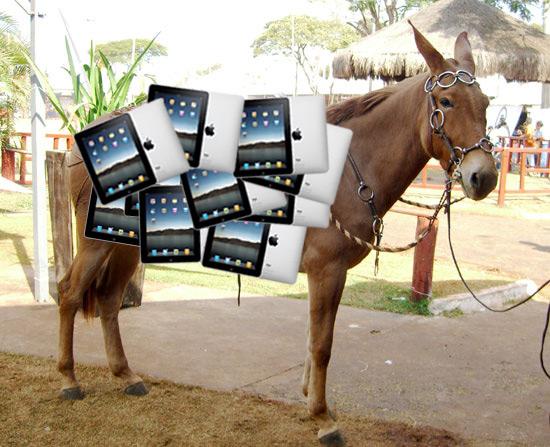Mula carregando iPads