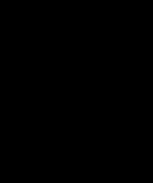 Logo preto da Apple