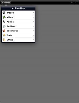 BlueNube - iPad