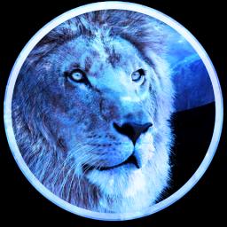 OS X Lion congelado (travado)