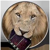 Ícone - VisualHub pro Lion