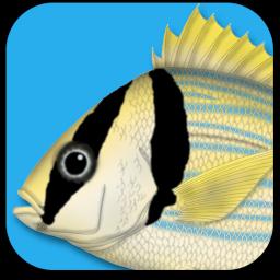 Ícone - Peixes Marinhos