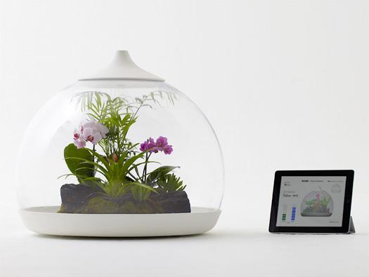 Biome Smart Terrarium