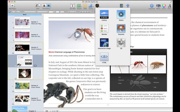 Interface do iBooks Author