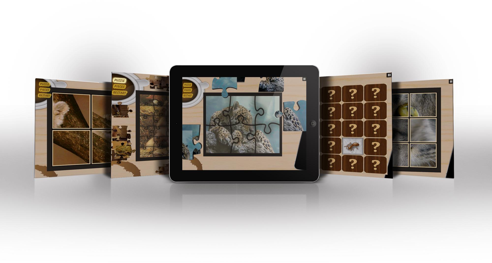 Puzzle Pro 3x1 - iPad