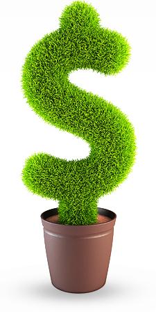 Vaso de dinheiro verde
