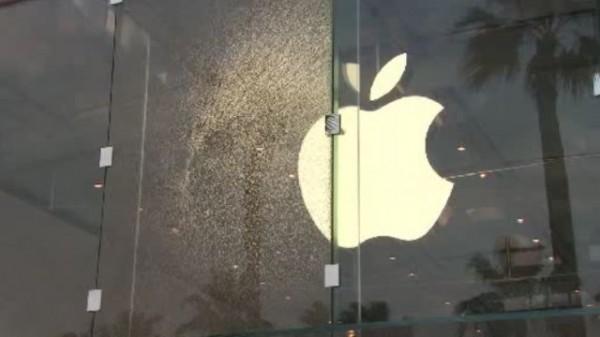 Apple Store, Highland Village, com tiros em sua fachada