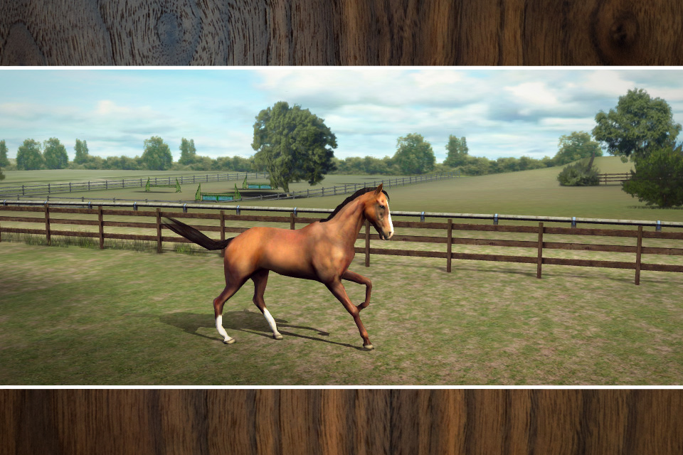 My Horse - iPhone