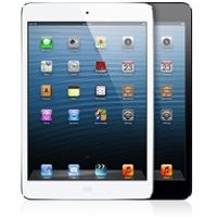 iPad mini (miniatura)