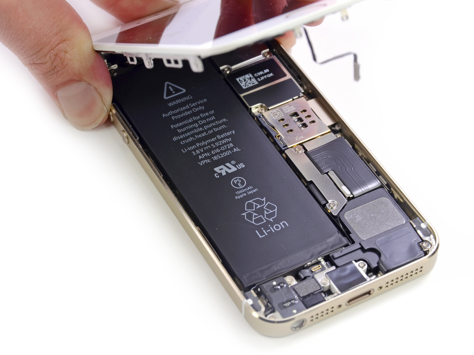 Desmontagem do iPhone 5s dourado - iFixit