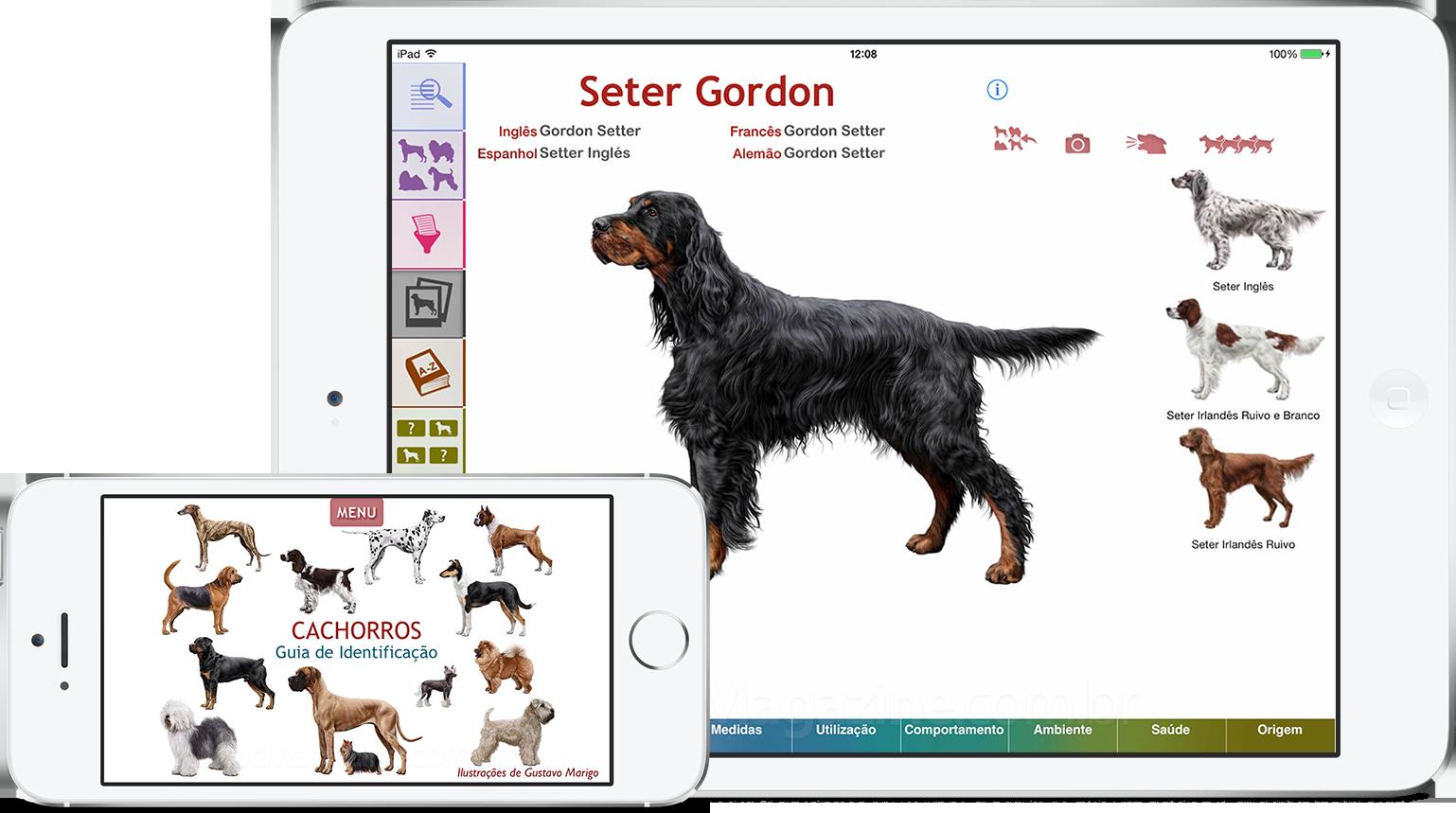 Cachorros - Guia de Identificação em iGadgets