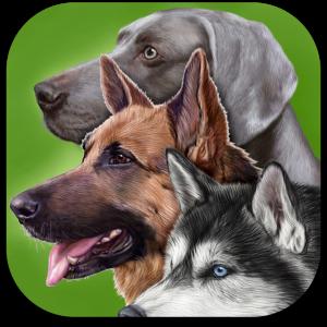 Ícone - Cachorros - Guia de Identificação