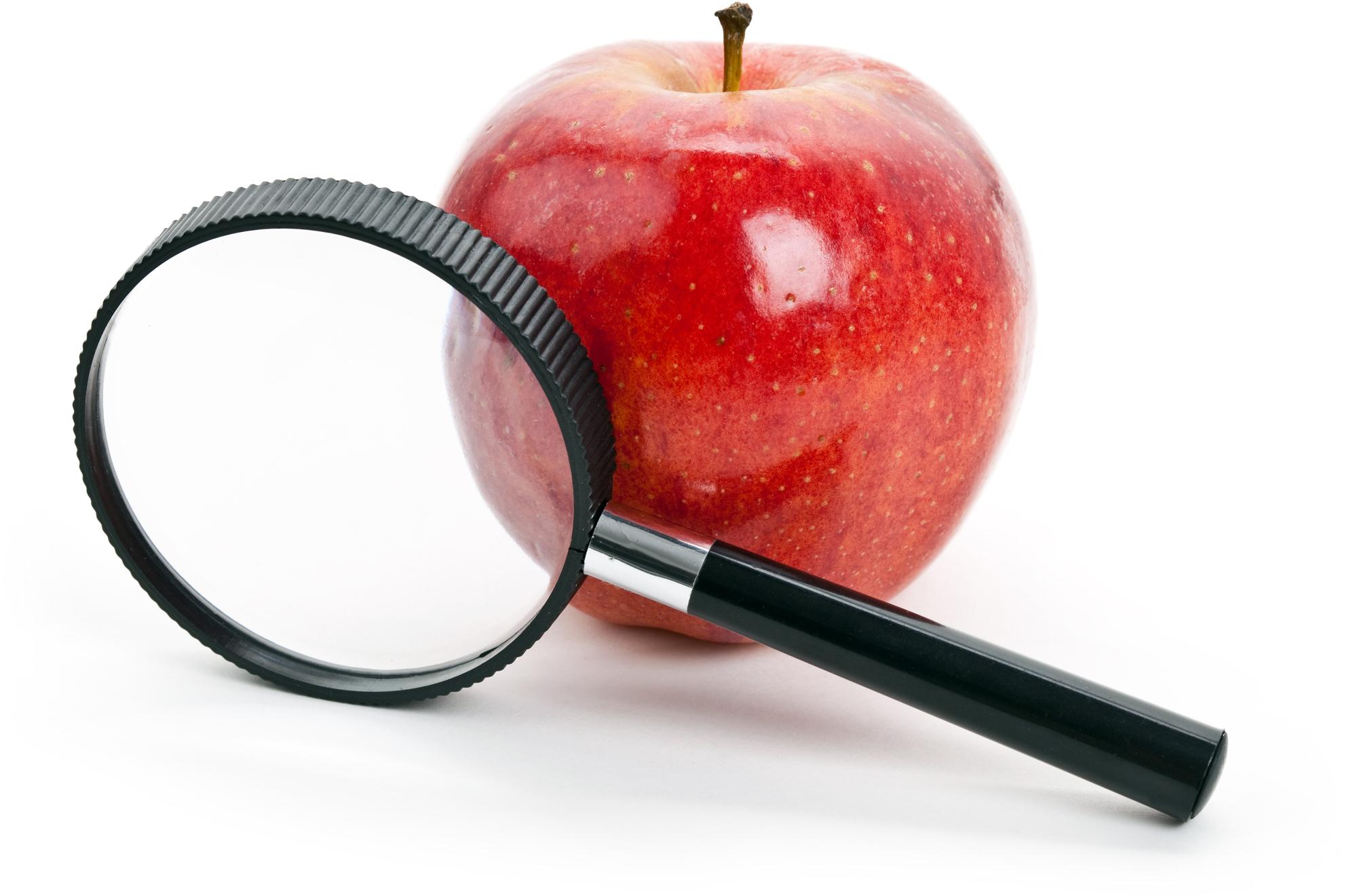 Lupa com maçã vermelha