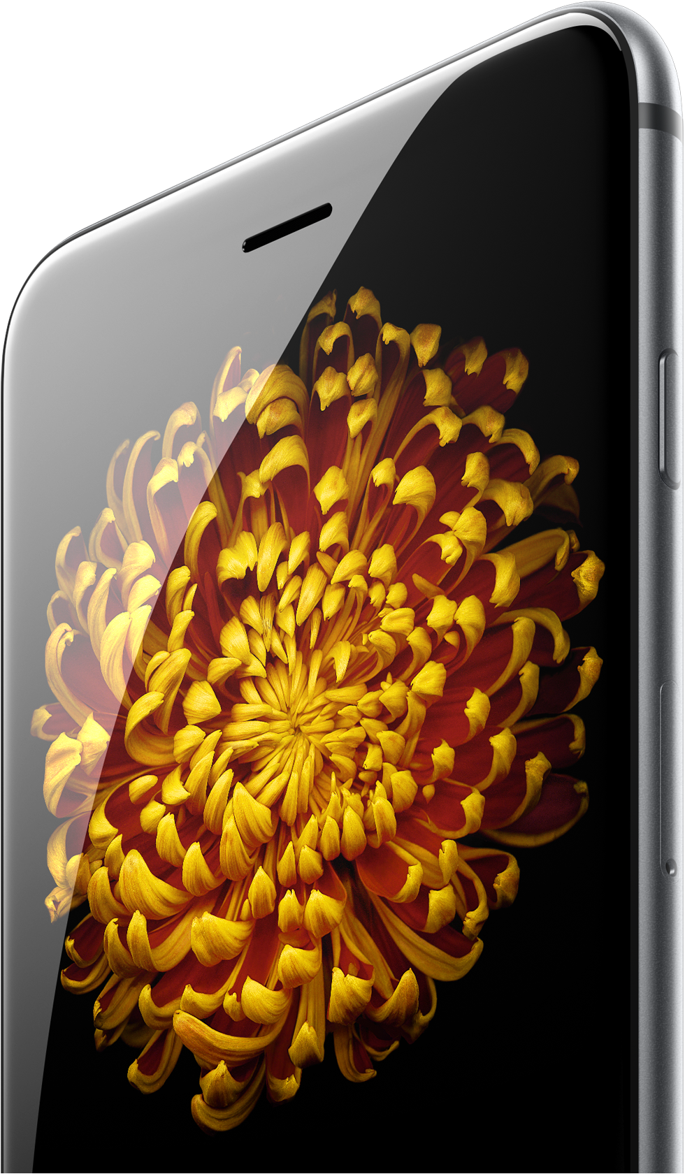 ↪ Finja surpresa  pré-venda dos iPhones 6 e 6 Plus bate novo ... 620d83421e