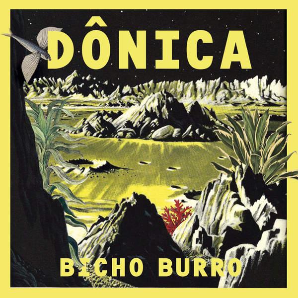 "Capa do single ""Bicho Burro"""