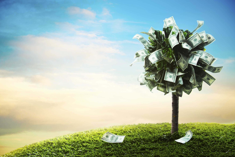 Árvore de dinheiro