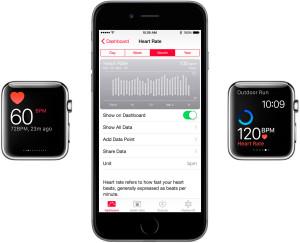 Batimentos cardíacos no Apple Watch e iPhone