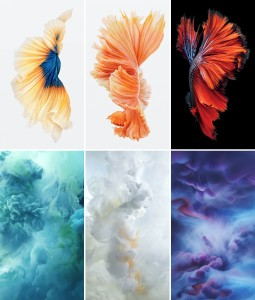 Wallpapers dos novos iPhones