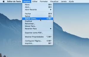 Salvar Como…no menu Arquivo do Editor de Texto