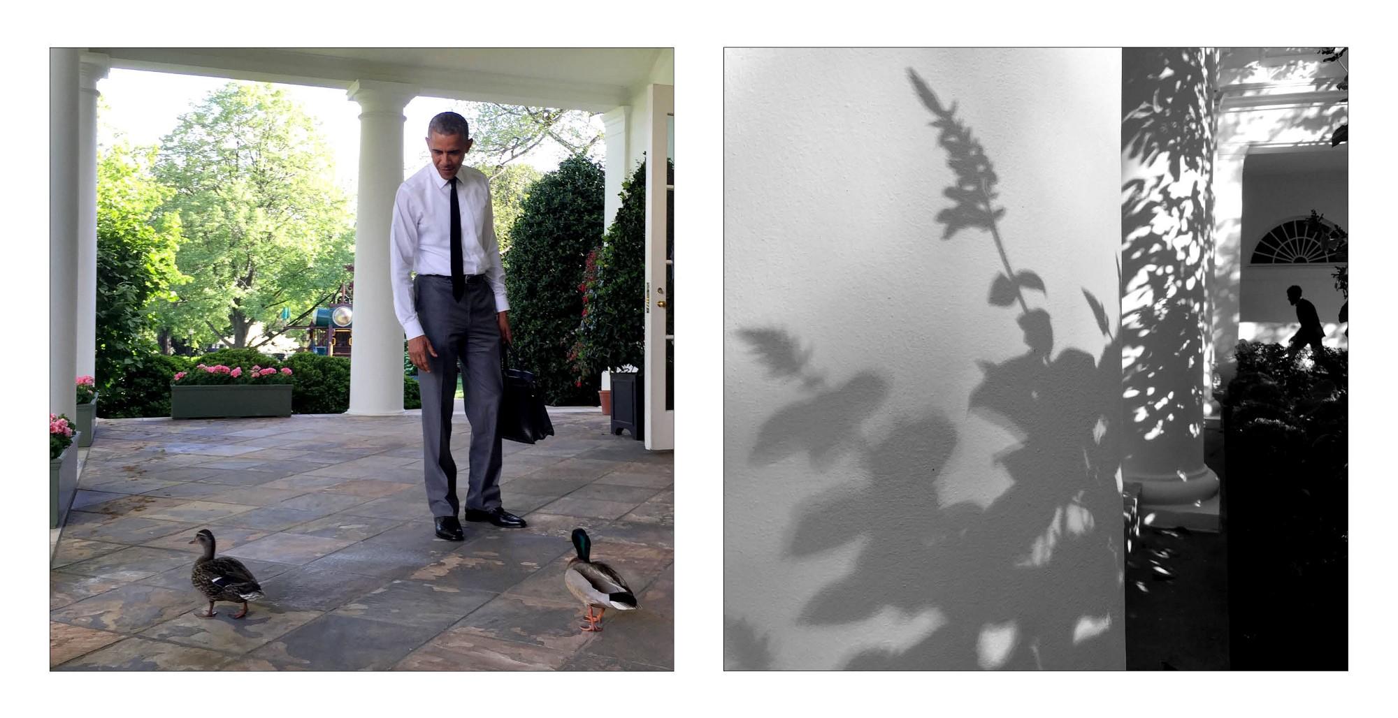 Fotos da Casa Branca tiradas com iPhone