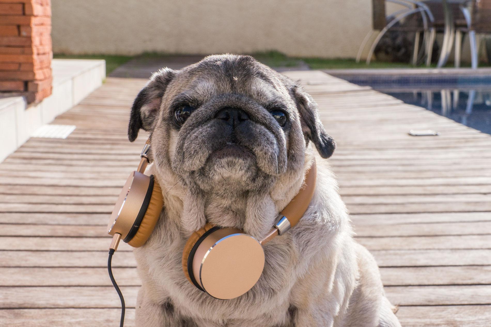 Fones de ouvido estéreo Muma, da ROCK