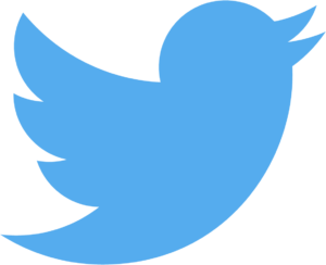 Logo do Twitter (passarinho/bird)