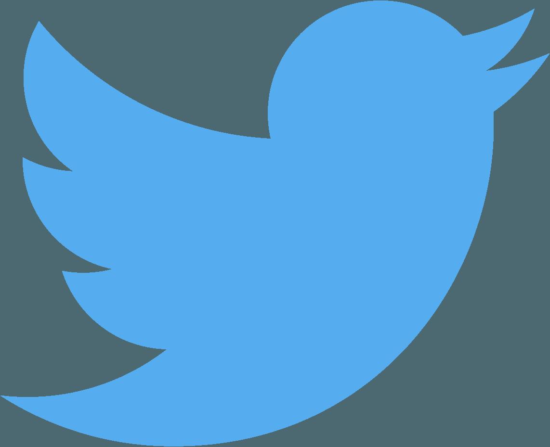 Logo do Twitter (passarinho/bird)