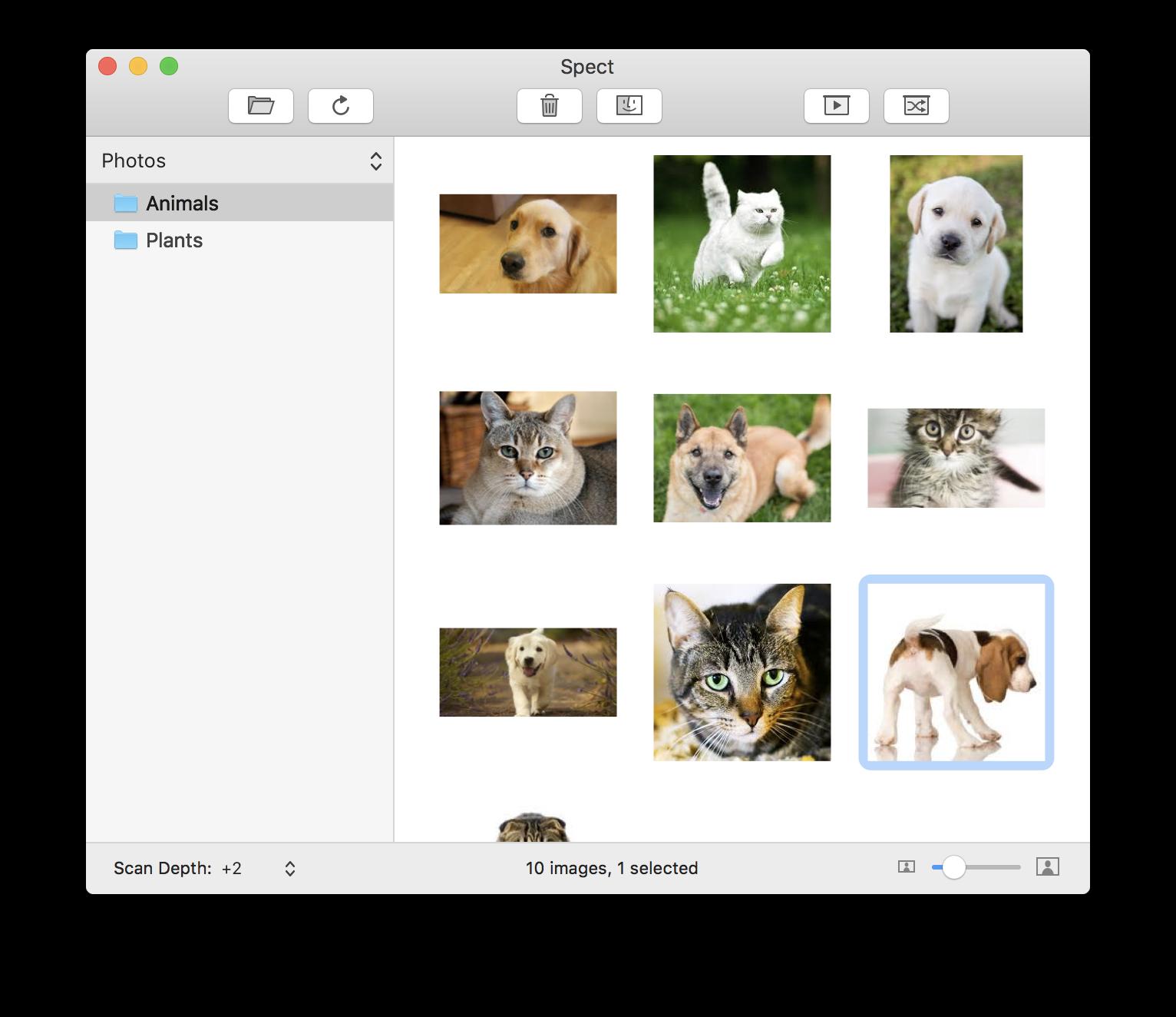 Spect, organizador de imagens para macOS