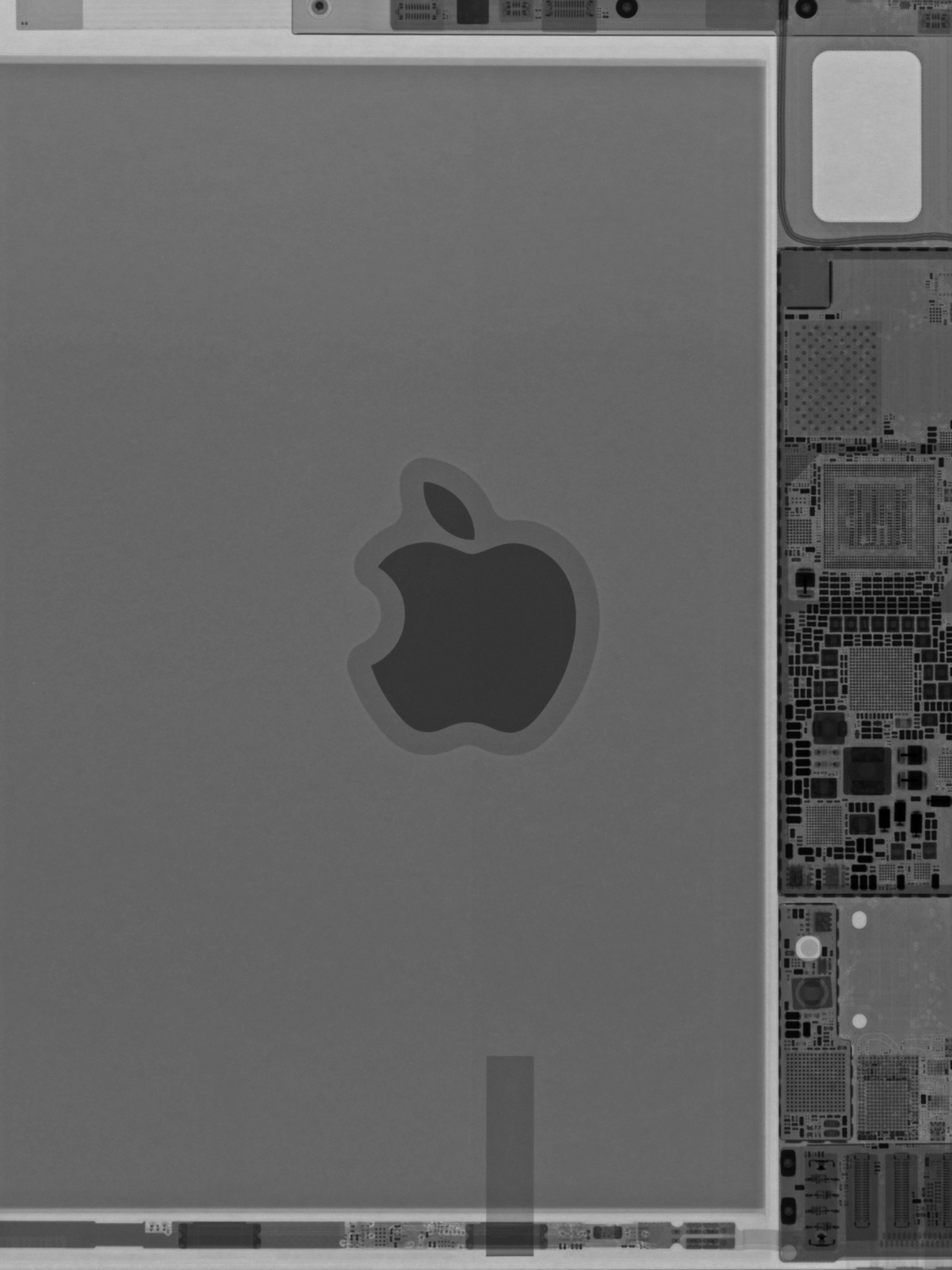 Wallpaper da iFixit com componentes internos do novo iPad mini