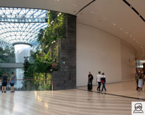 Futura Apple Jewel Changi Airport, em Singapura