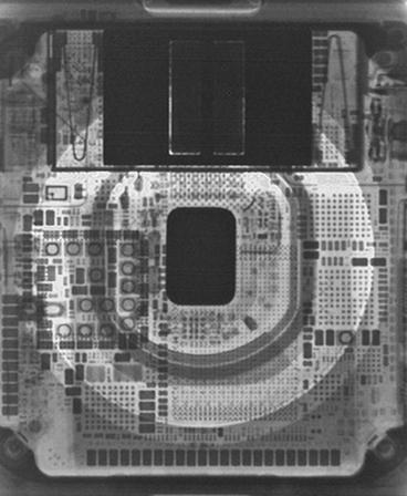 Wallpaper do Apple Watch Series 4 (raio-X)