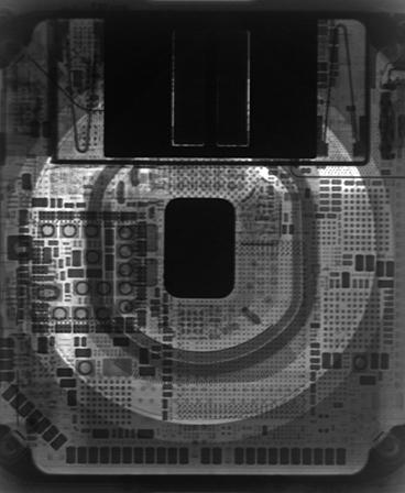Wallpaper do Apple Watch Series 5 (raio-X)