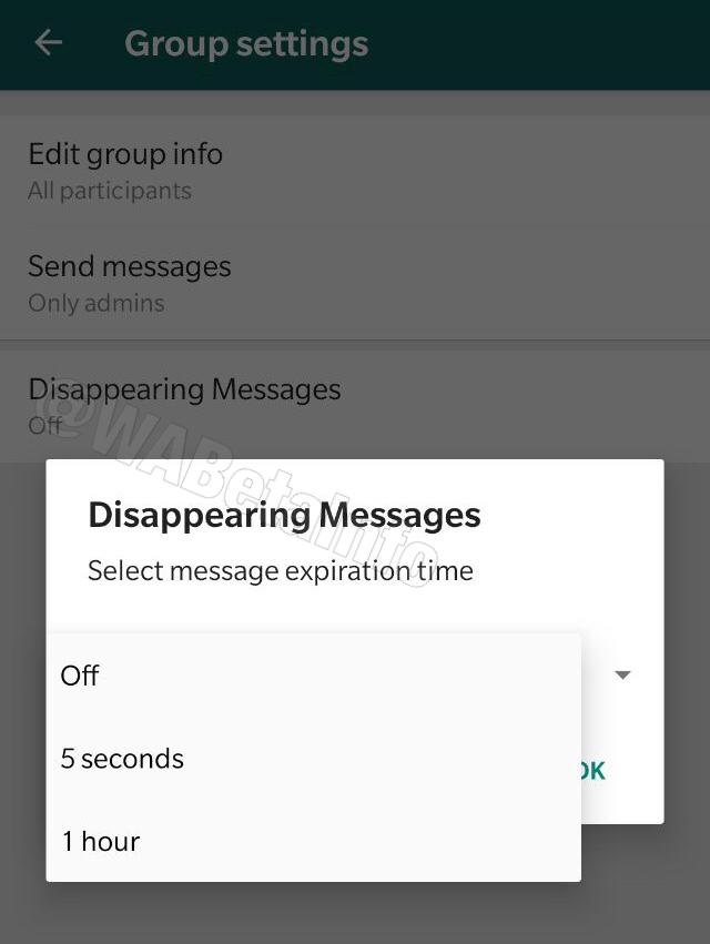 Opção para autodestruir mensagens no WhatsApp para Android (beta)