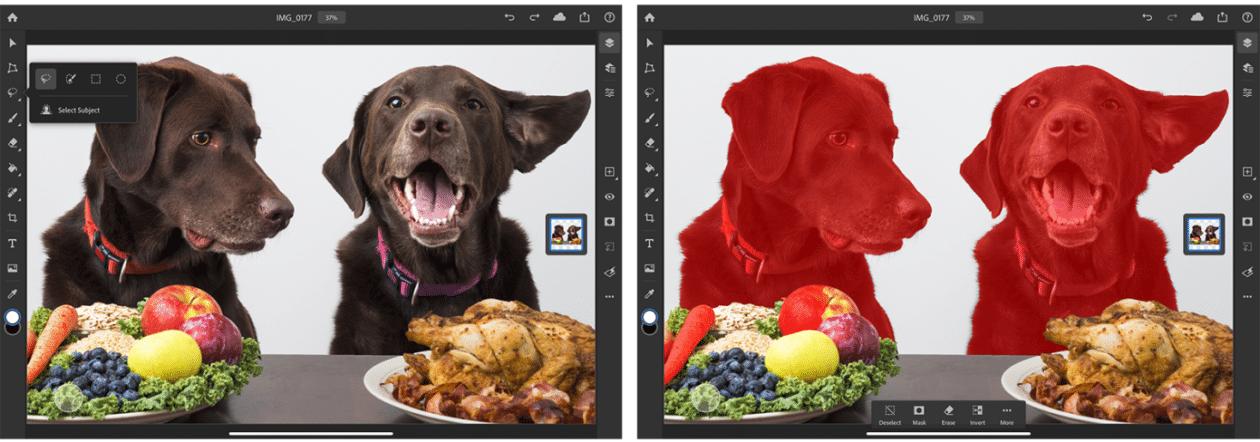 Select Subject no Photoshop para iPad