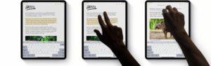 Copiar e colar no iPad