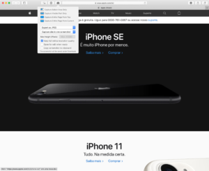 Page Screenshot for Safari